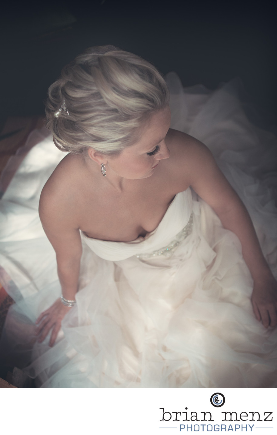 bride portrait kalamazoo wedding photographer