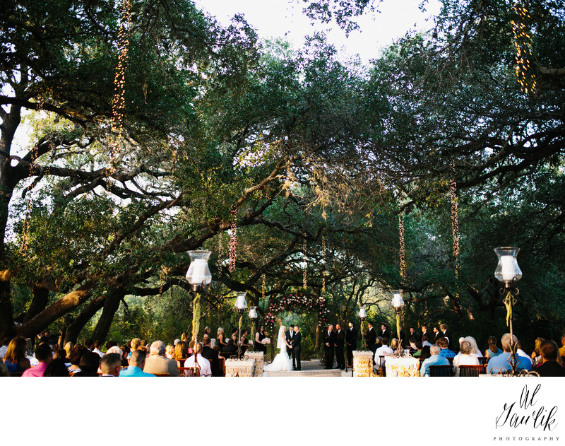 Texas outdoor wedding and lights hanging from trees