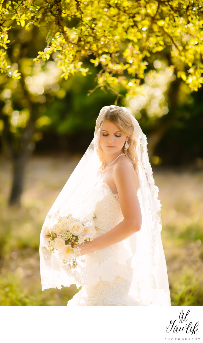 Texas Wedding Photographer Maximum Beauty