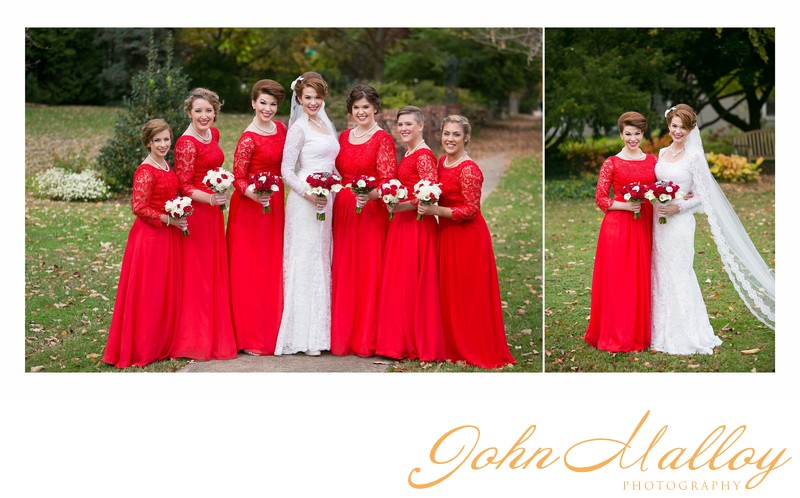 Elegantly Posed Bride and Bridesmaids