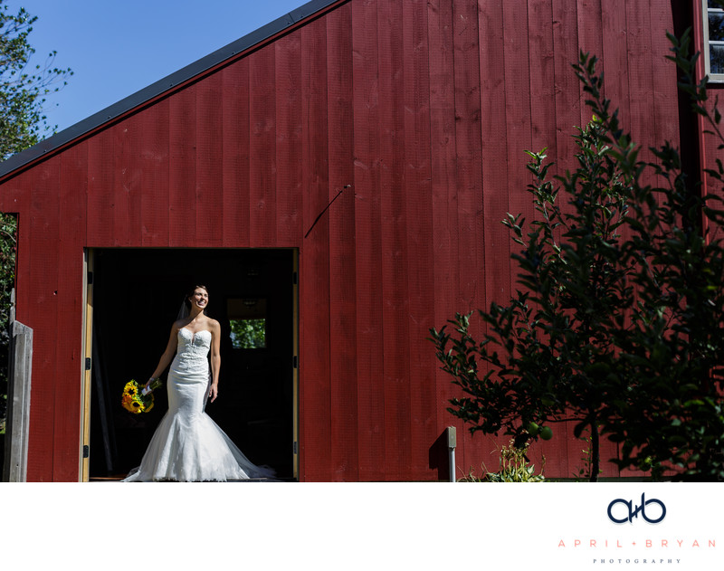 Wedding at The Country Barn