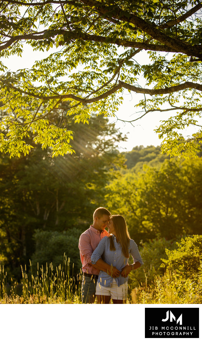Engaged couple posing under tree