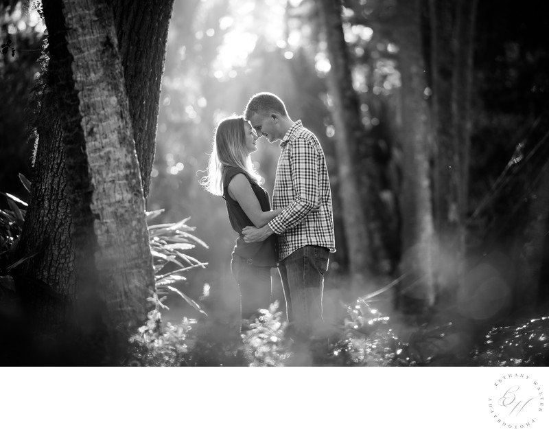Engaged Couple at Washington Oaks Garden