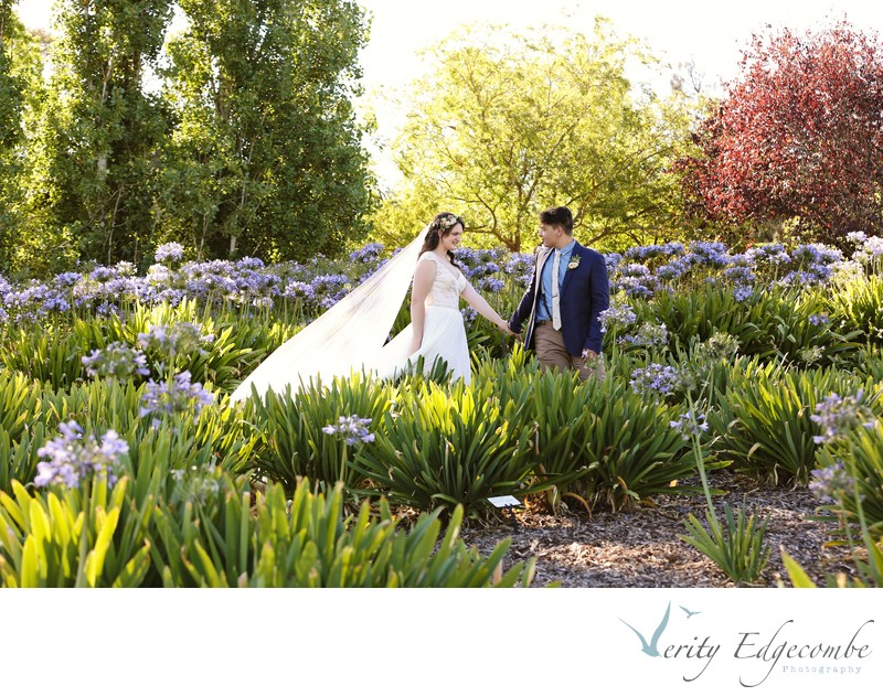 Littlewood Agapanthus Farm Wedding Venue