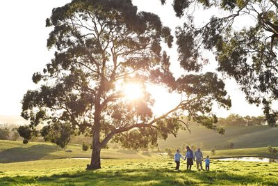 Family Photos in Adelaide Hills