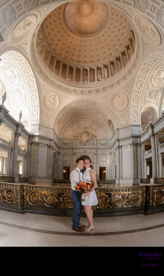 same sex marriage dome