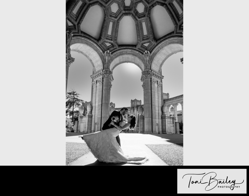 palace of fine arts dome black and white photo