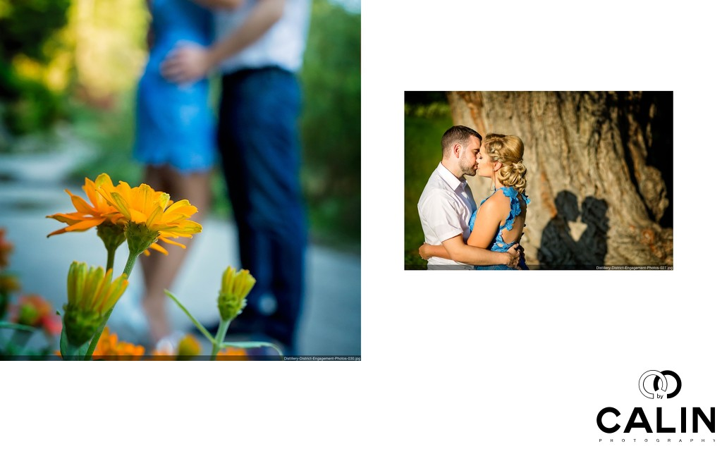 Artistic Engagement Photos in Toronto Botanical Gardens