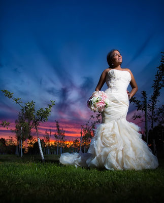 Bride Portrait After Toronto Botanical Garden Wedding