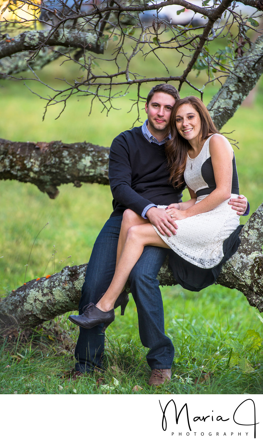 Engagement Photo in Doylestown