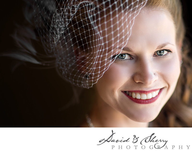 Bird Cage Veils and Bridal Portraits