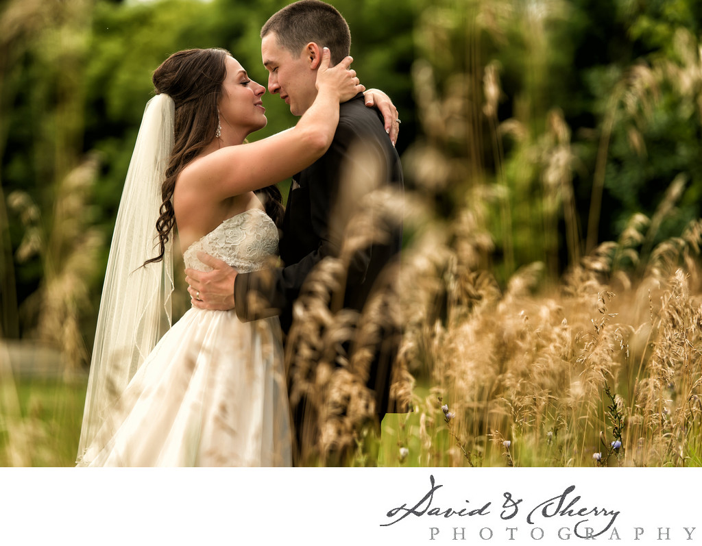 Wedding Photographers in Collingwood