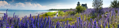 Cobble Beach Wedding Photography