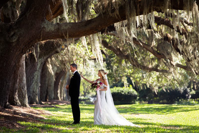 avenue of oaks sea island wedding