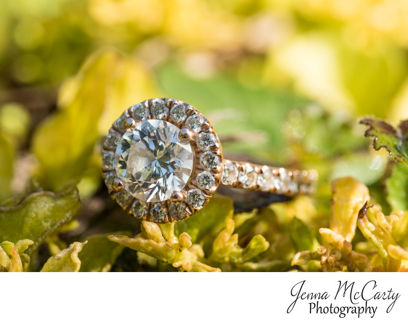 Rose gold Engagement Ring at Canton Garden Center