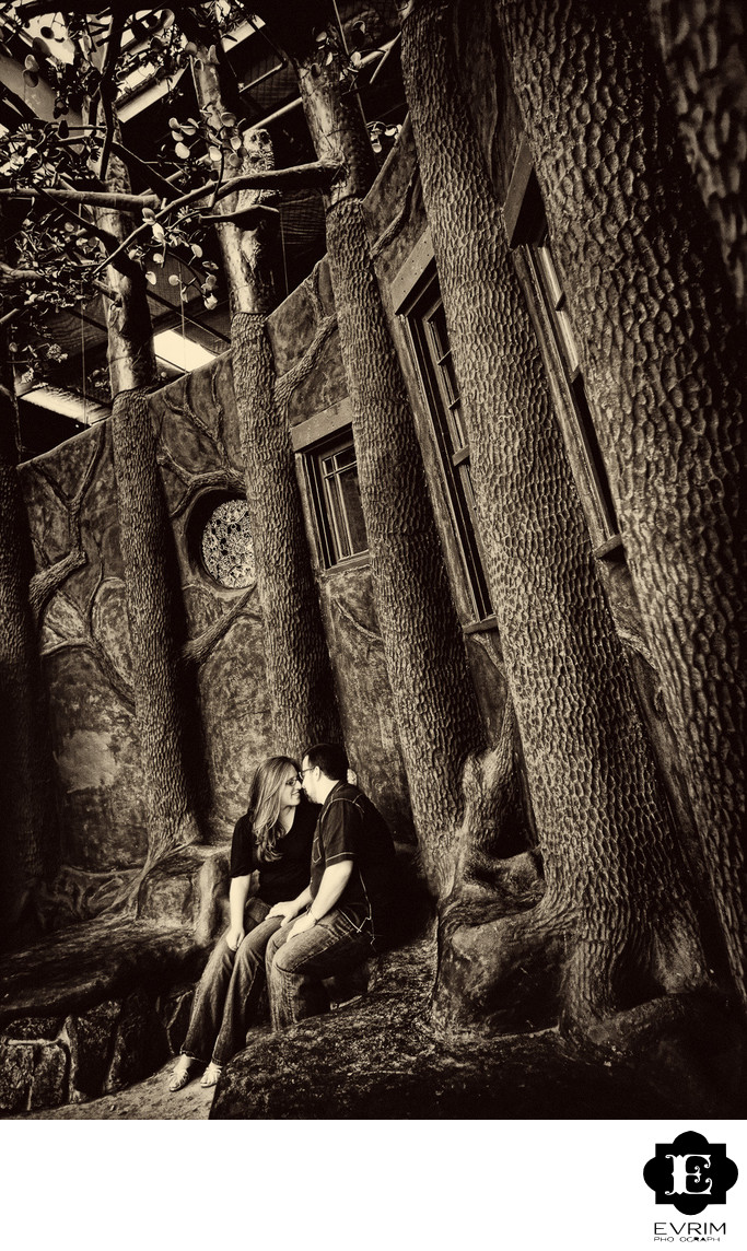 Artistic Best Engagement Picture Photographer in Portland