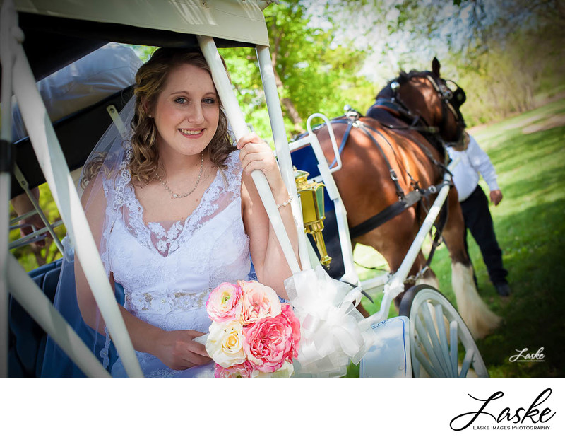 Bride sits in a horse drawn carriage on her wedding day