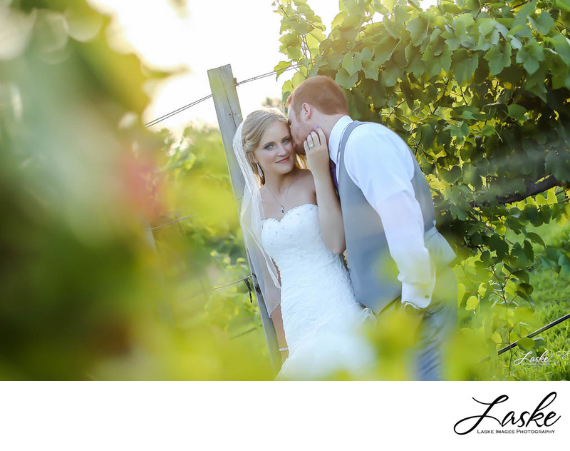 OKC Wedding Photographer takes Pic of Groom Kisses Bride on the Cheek in a Vineyard