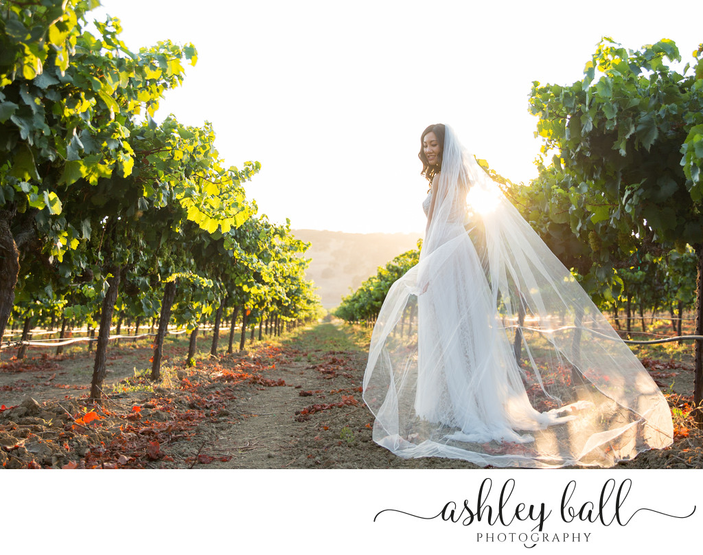 Top Wedding Photographer in Sacramento California