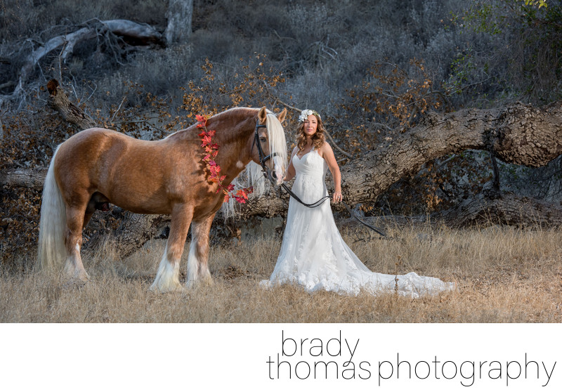 Best Bride Horse Photographer California
