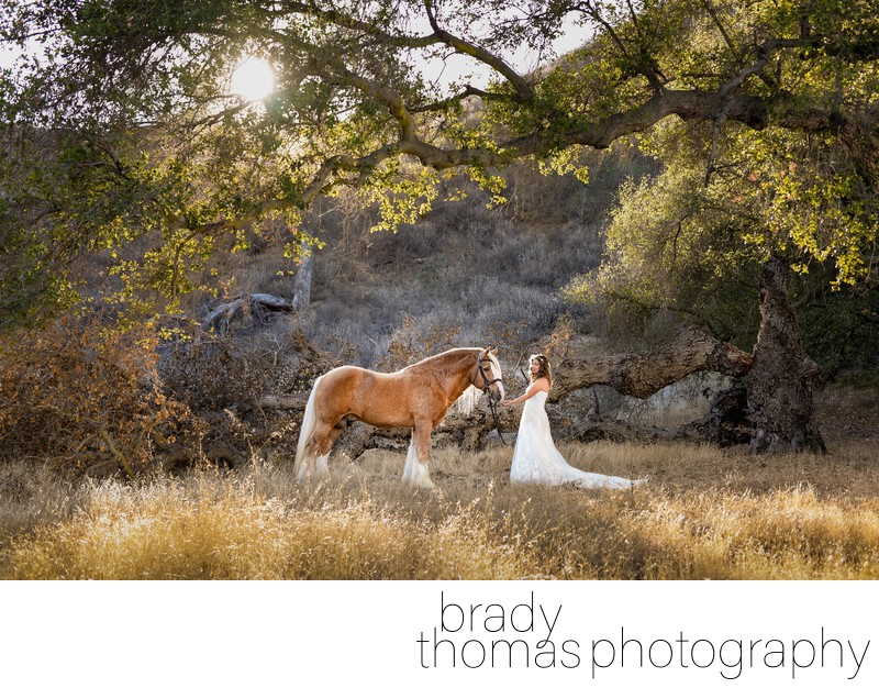 Best Horse Bride Photographer Agoura Hills