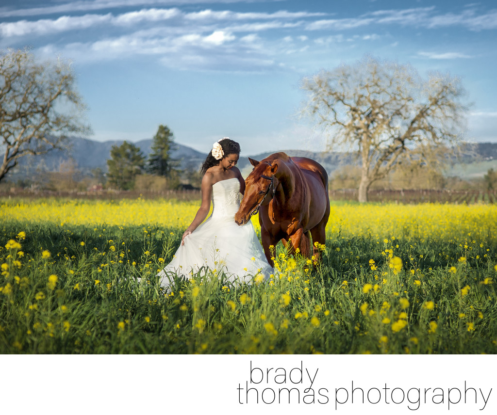 Best Horse Bride Photography Napa