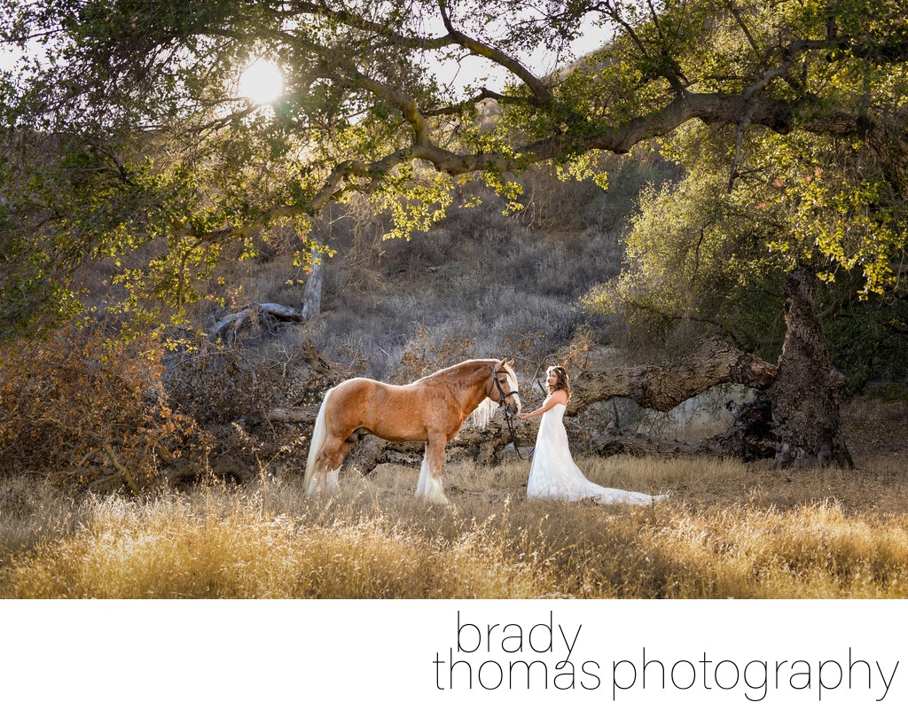 Best Horse and Bride Photographer Santa Rosa