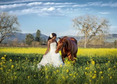 Best Horse and Bride Photography Napa
