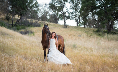 Horse and Bride Photographer Clayton