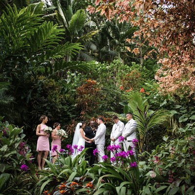 Weddings at Hunte's Gardens - Barbados Wedding Photography