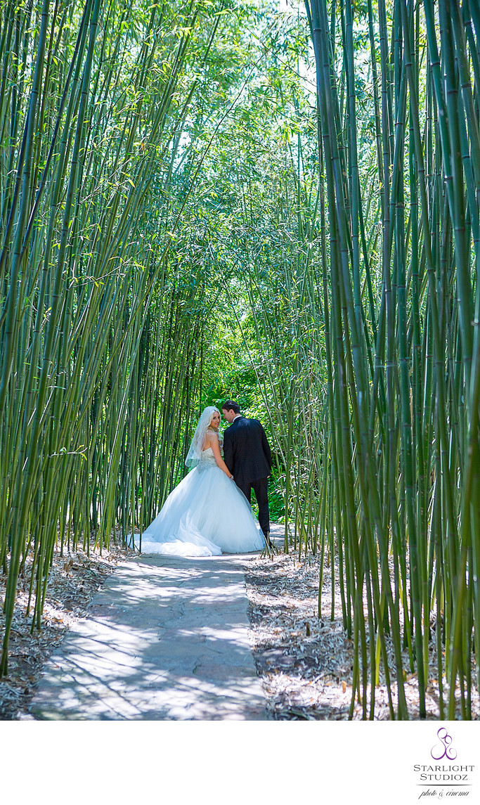 Snug Harbor Wedding Photos