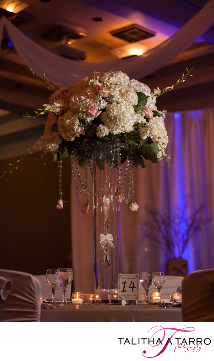 Hyatt Regency Albuquerque Wedding Photographs