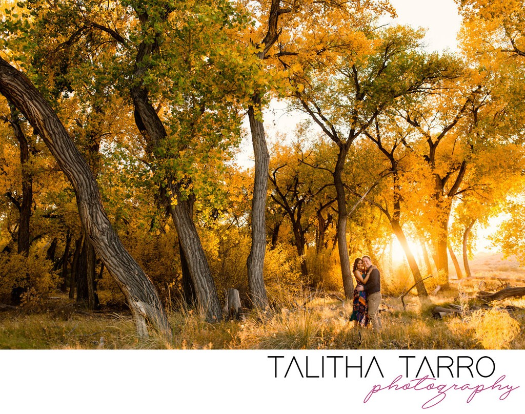 Golden Bosque Engagement