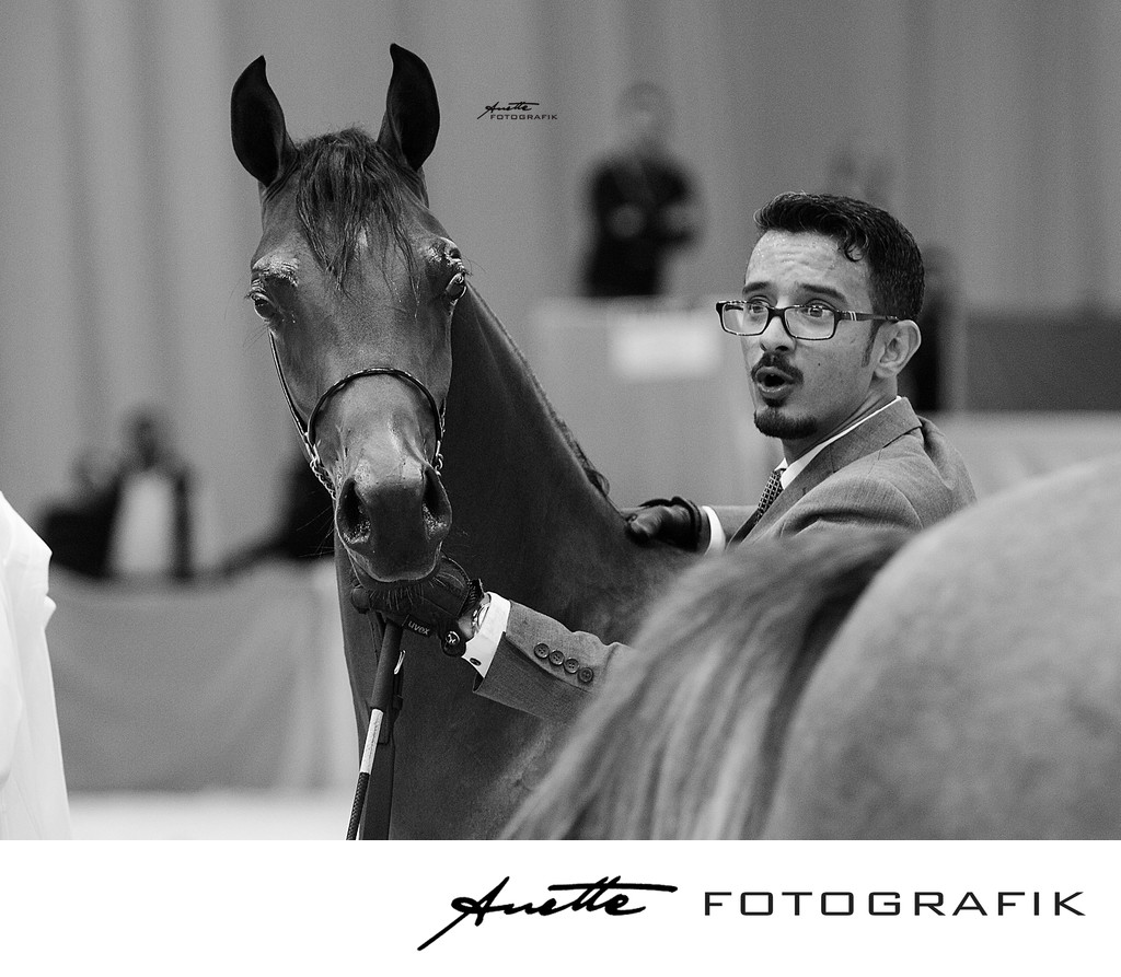documentary horseshow photography