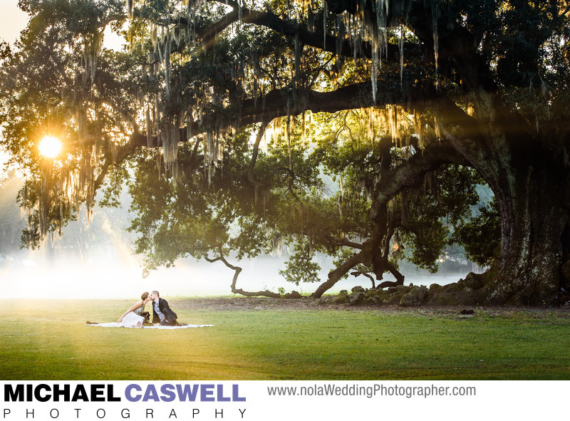New Orleans Elopement at the Tree of Life Audubon Park