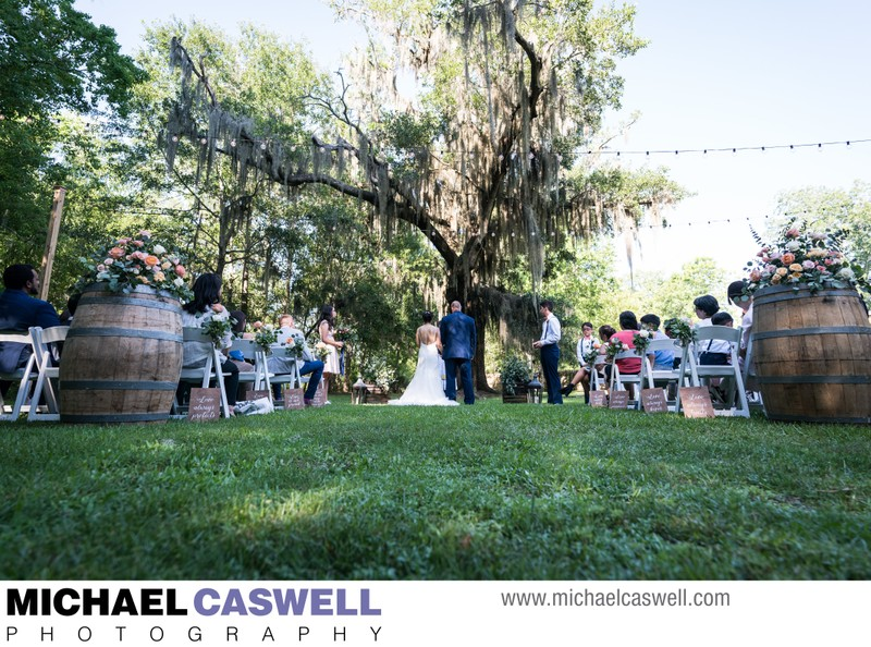 Wedding Ceremony at Palmettos on the Bayou