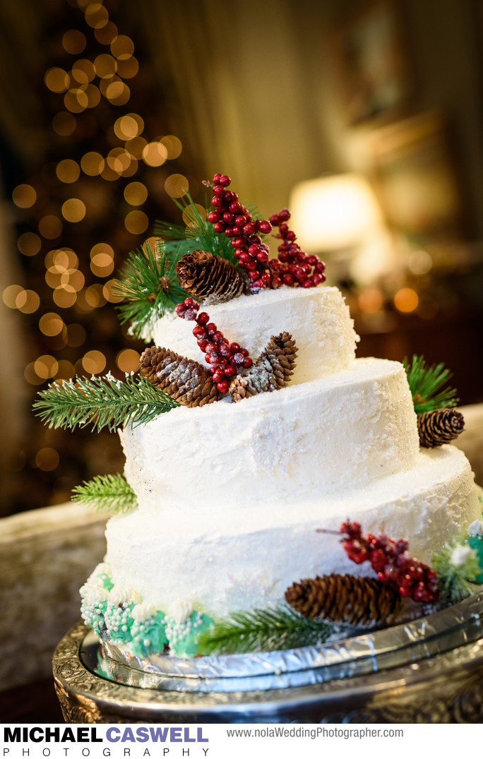 Winter-Themed Wedding Cake at Terrell House