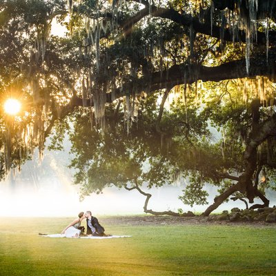New Orleans Elopement Portrait at the Tree of Life