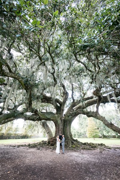 Wedding Ceremony at the Tree of Life in New Orleans