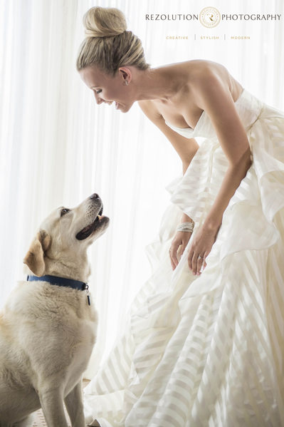 Wedding Photographer bride and her Dog Gold Coast