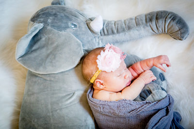 Baby cuddling with stuffed elephant