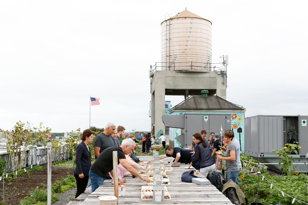 Farm to table lunch created by Brooklyn Grange for attendees