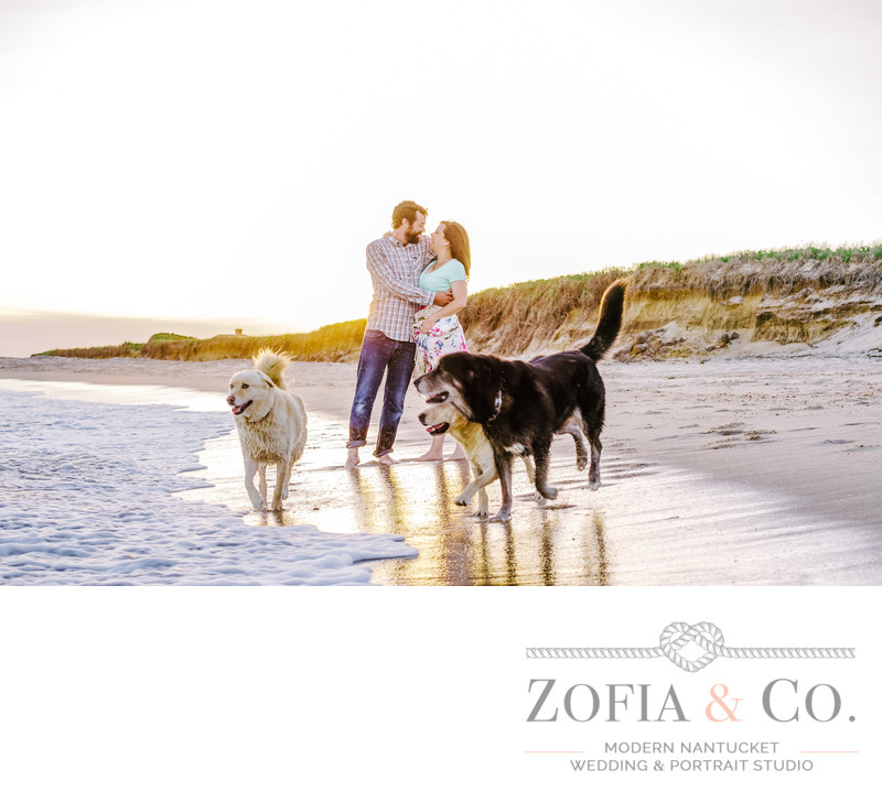 beach engagement with dogs