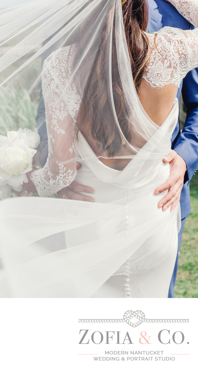 Pronovias gown and veil