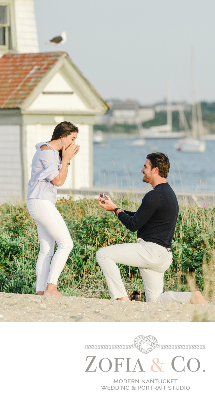 proposal at brant point with seagull