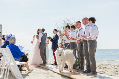 wedding first kiss galley beach with dog at ceremony