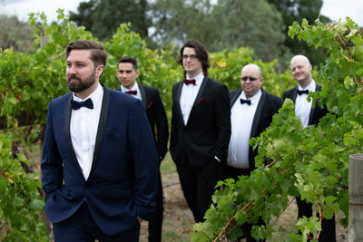 Fergusson Winery Wedding Photographer
