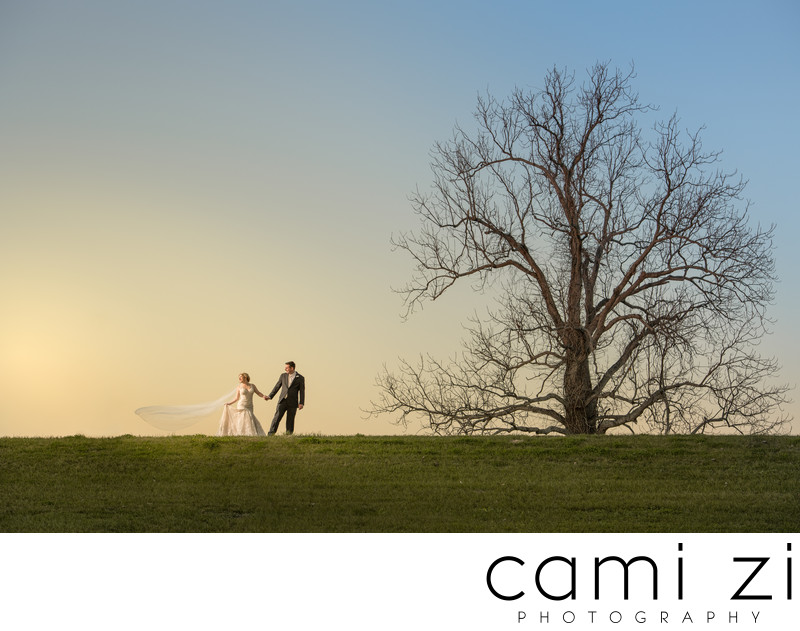 Mississippi Levee Wedding Portrait