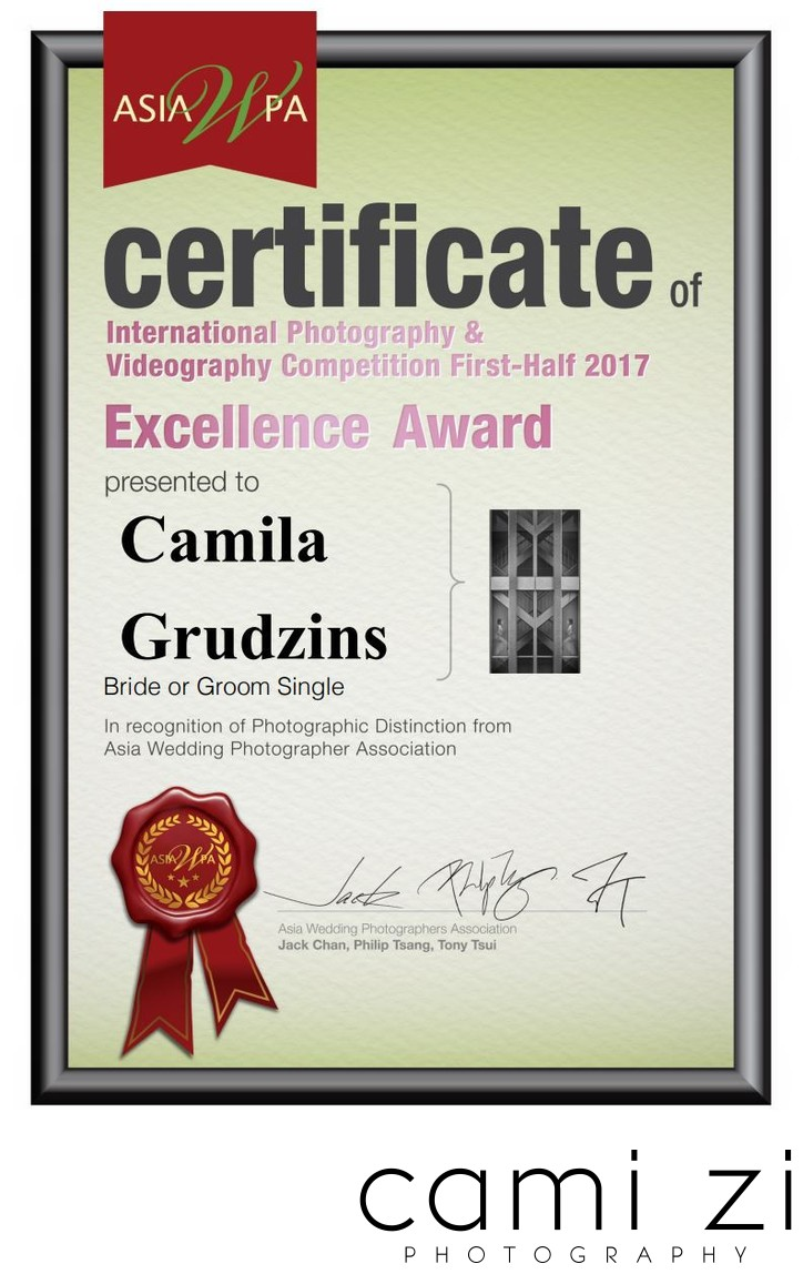 Bridal Alone Photography Excellence Award Asia WPA