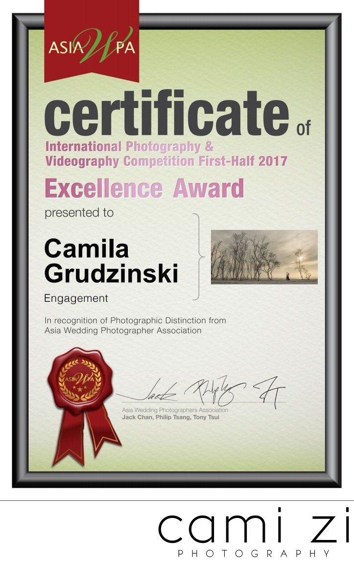 Engagement Session Photography Excellence Award